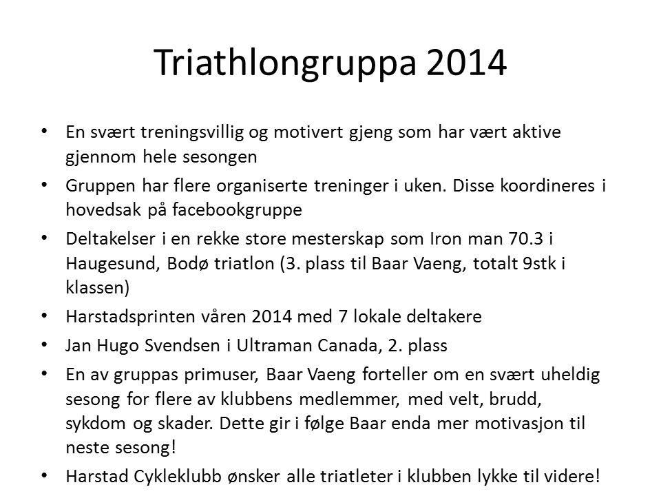 Triathlongruppa 2014 En svært treningsvillig og motivert gjeng som har vært aktive gjennom hele sesongen.