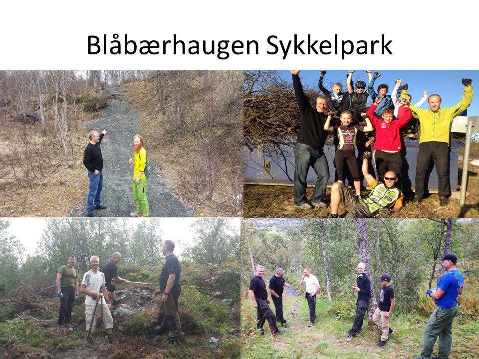 Blåbærhaugen Sykkelpark