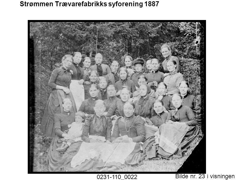 Strømmen Trævarefabrikks syforening 1887