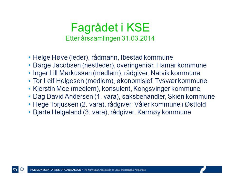 Fagrådet i KSE Etter årssamlingen 31.03.2014