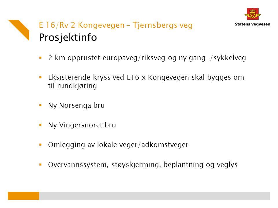 Prosjektinfo E 16/Rv 2 Kongevegen – Tjernsbergs veg
