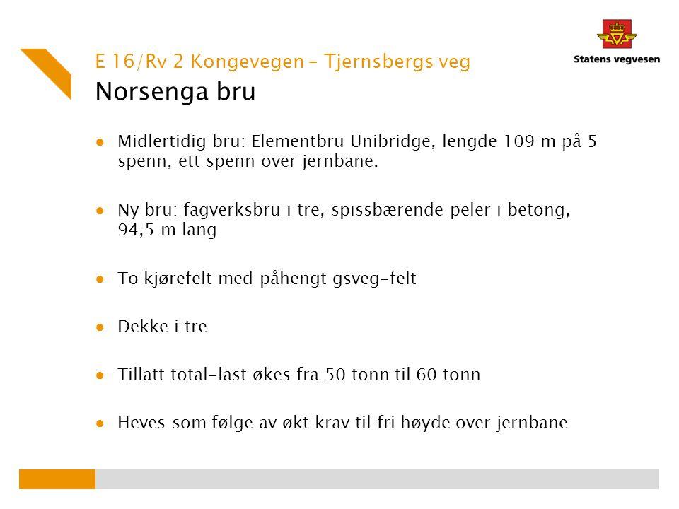 Norsenga bru E 16/Rv 2 Kongevegen – Tjernsbergs veg