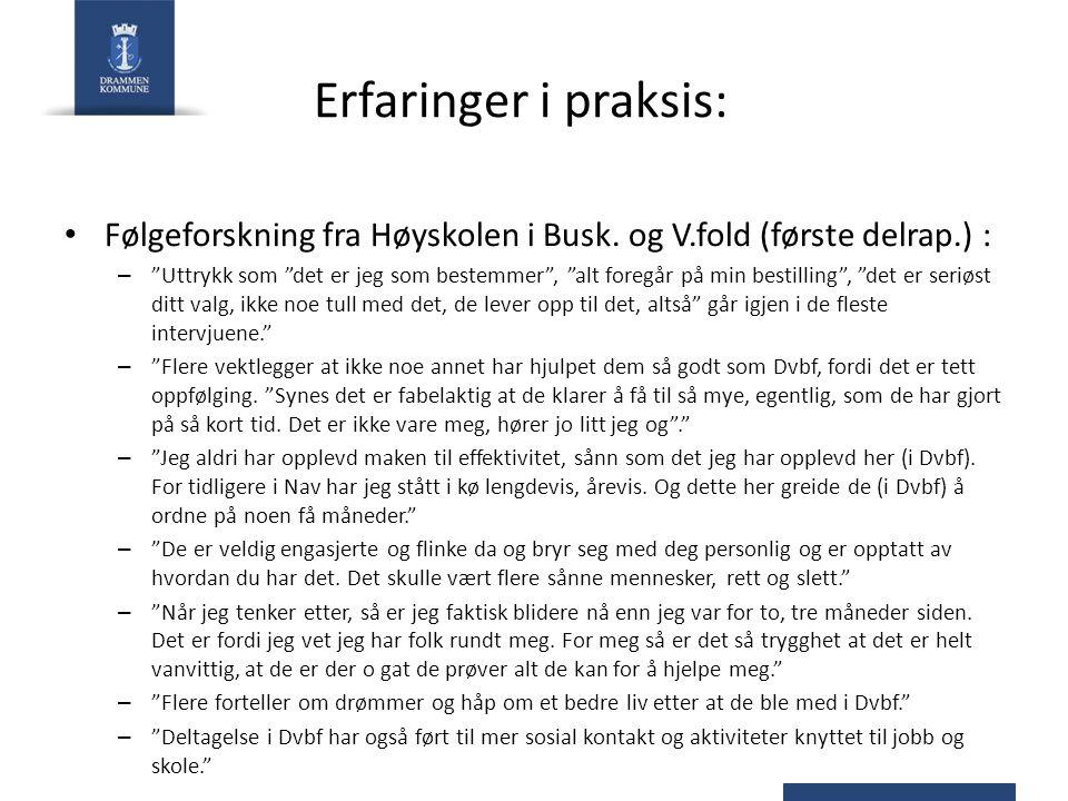 Erfaringer i praksis: Følgeforskning fra Høyskolen i Busk. og V.fold (første delrap.) :