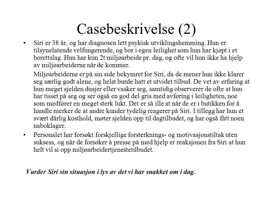 Casebeskrivelse (2)