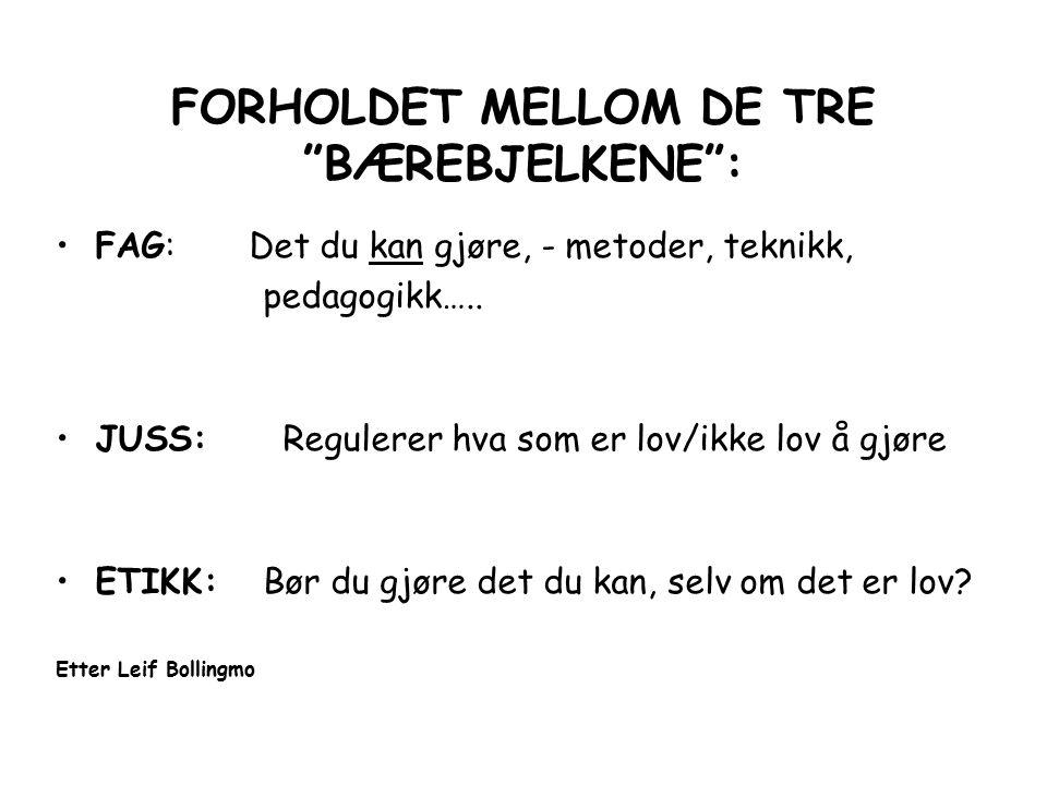 FORHOLDET MELLOM DE TRE BÆREBJELKENE :