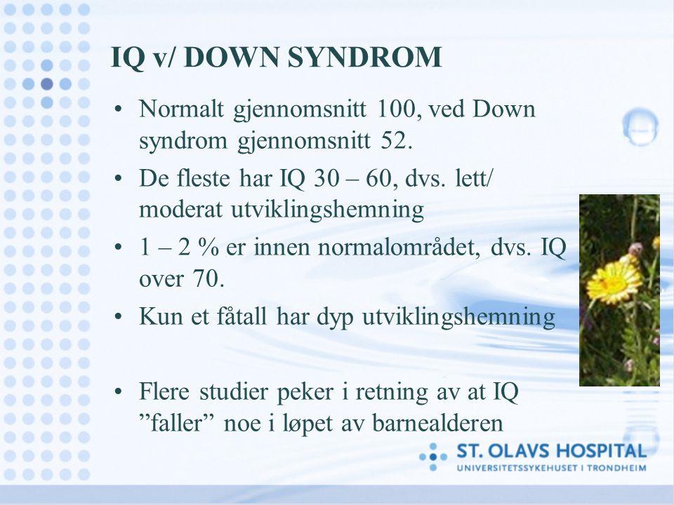 IQ v/ DOWN SYNDROM Normalt gjennomsnitt 100, ved Down syndrom gjennomsnitt 52. De fleste har IQ 30 – 60, dvs. lett/ moderat utviklingshemning.