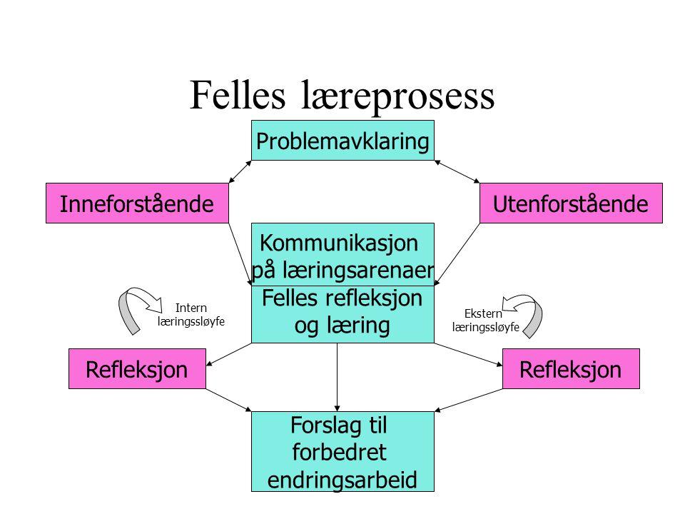 Felles læreprosess Problemavklaring Inneforstående Utenforstående