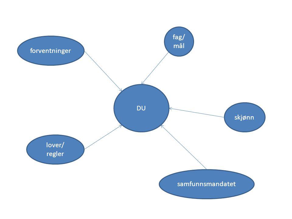 fag/ mål forventninger DU skjønn lover/ regler samfunnsmandatet