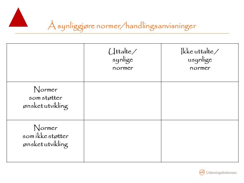 Å synliggjøre normer/handlingsanvisninger