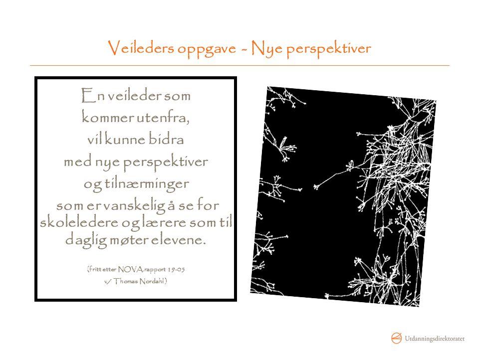 Veileders oppgave - Nye perspektiver