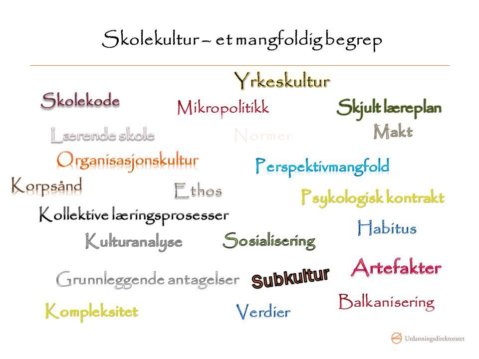 Skolekultur – et mangfoldig begrep