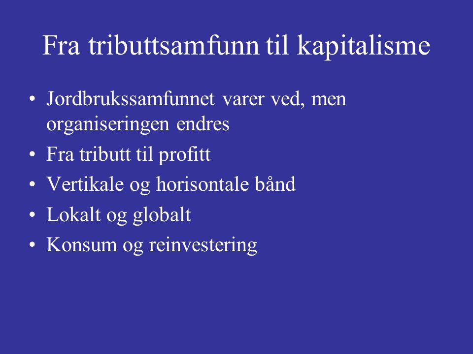 Fra tributtsamfunn til kapitalisme