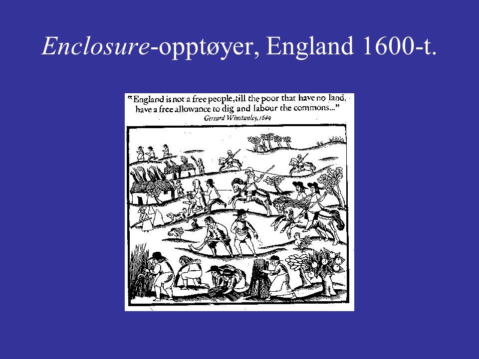 Enclosure-opptøyer, England 1600-t.