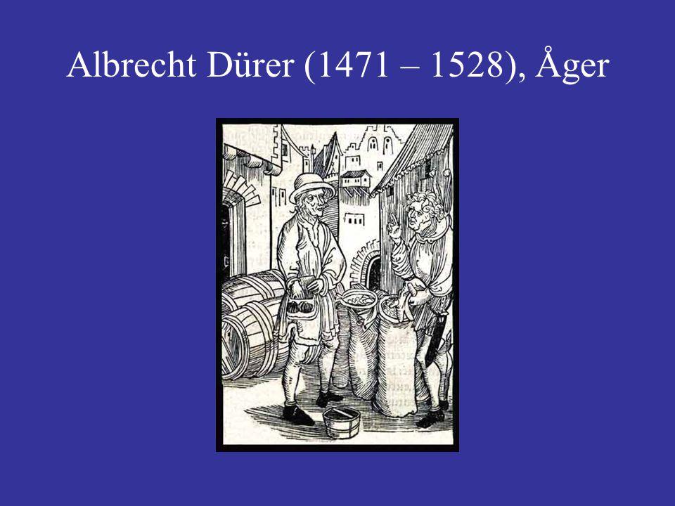 Albrecht Dürer (1471 – 1528), Åger