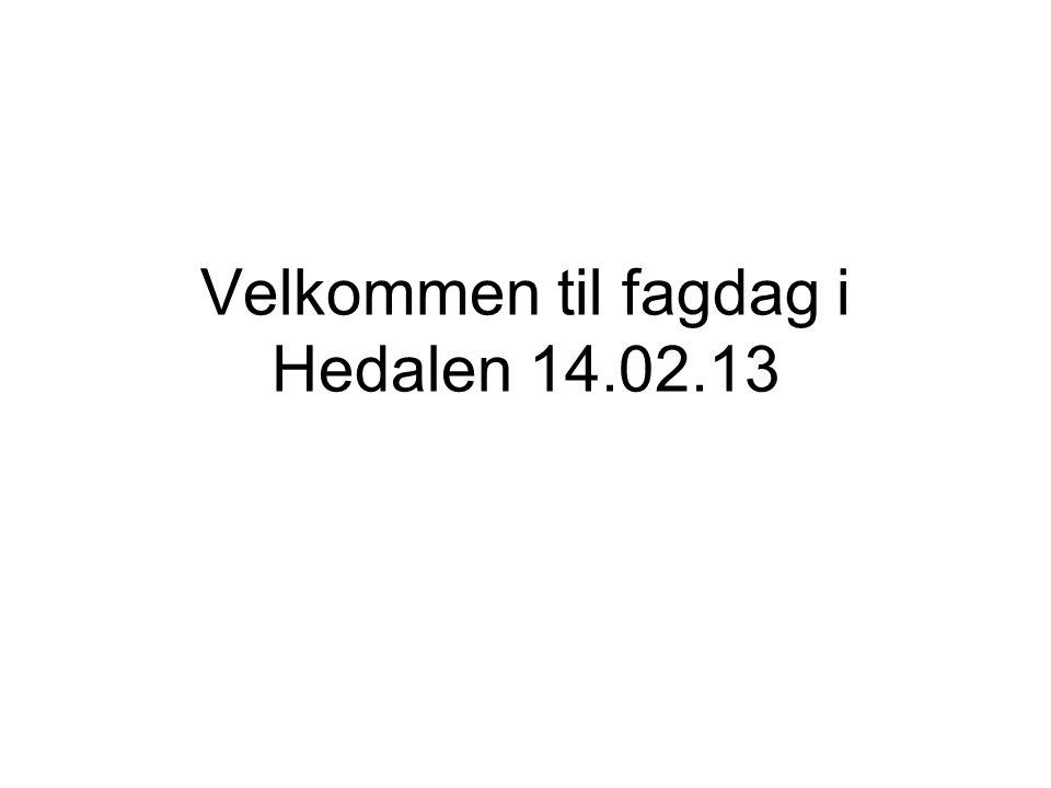 Velkommen til fagdag i Hedalen 14.02.13