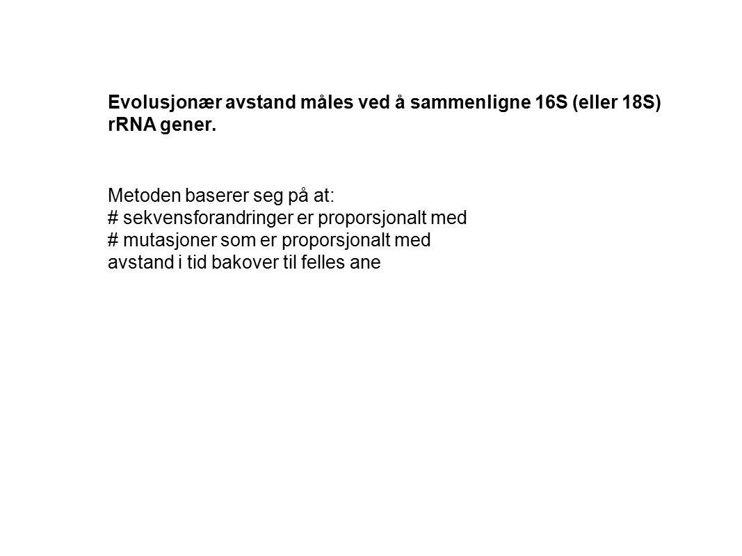 Evolusjonær avstand måles ved å sammenligne 16S (eller 18S)