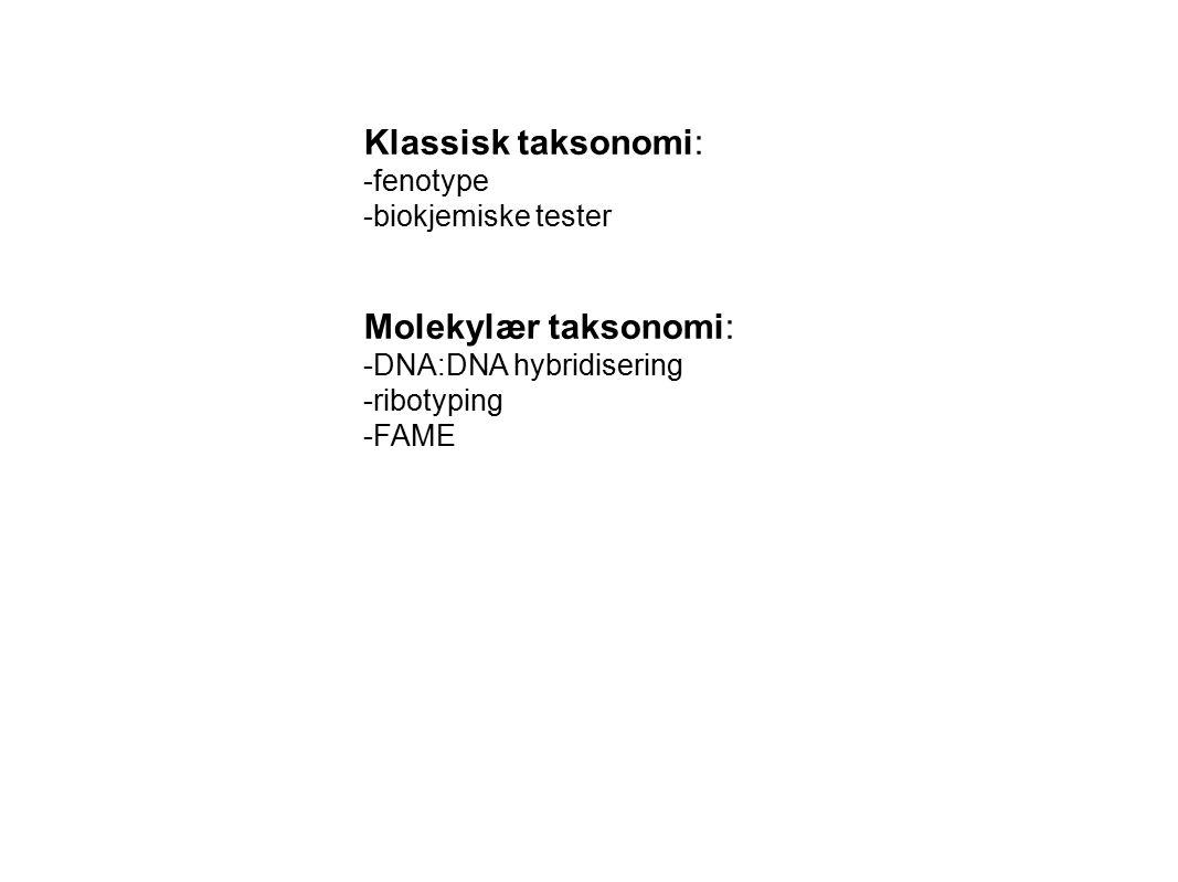 Klassisk taksonomi: Molekylær taksonomi: fenotype biokjemiske tester