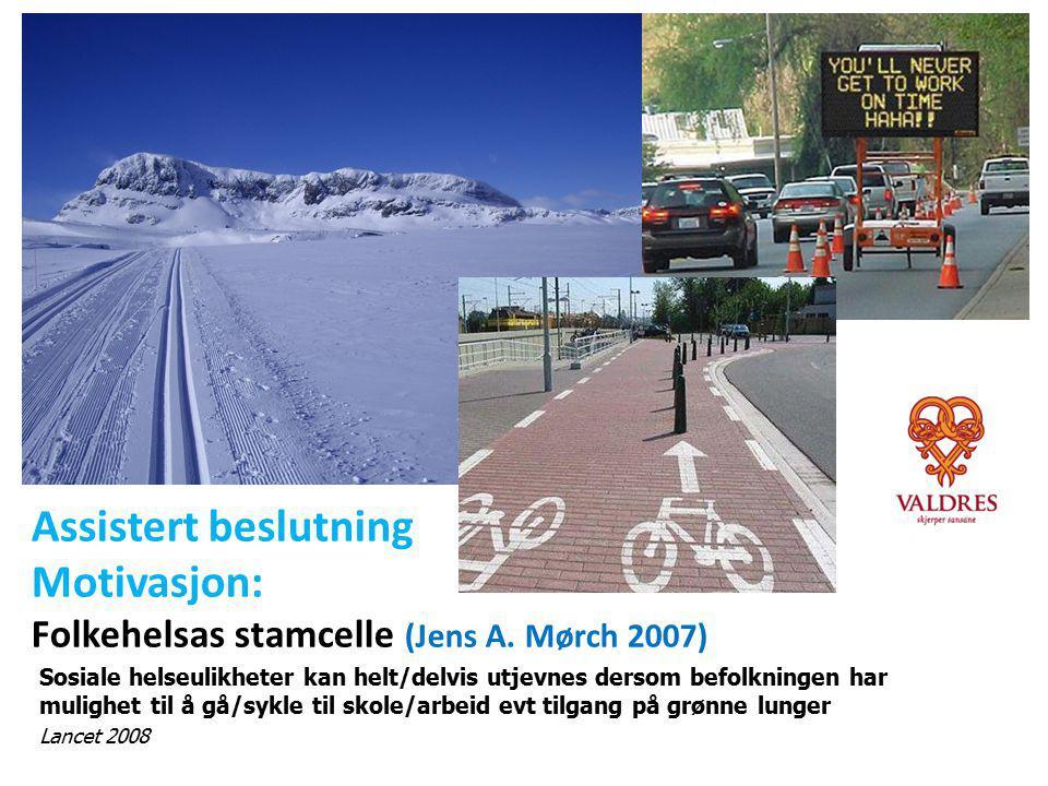 Motivasjon: Folkehelsas stamcelle (Jens A. Mørch 2007)