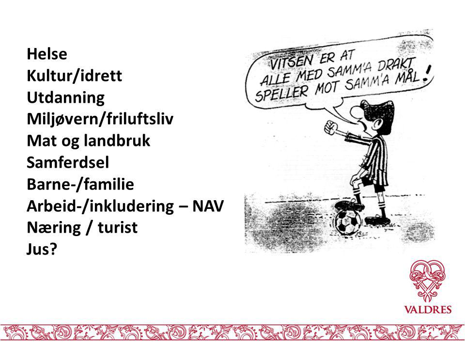Helse Kultur/idrett. Utdanning. Miljøvern/friluftsliv. Mat og landbruk. Samferdsel. Barne-/familie.