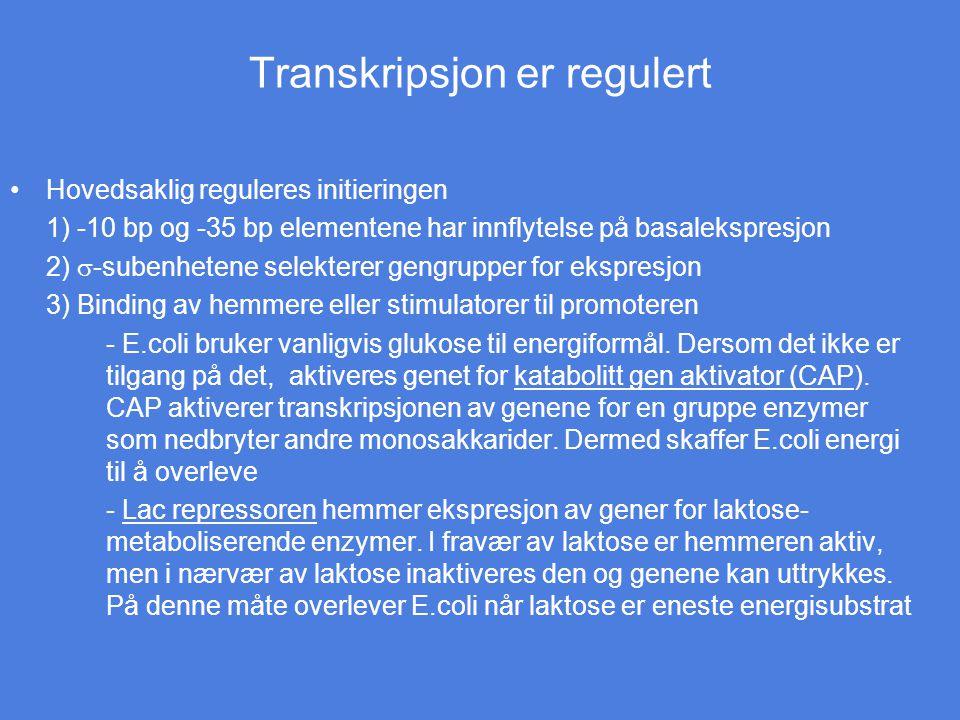 Transkripsjon er regulert