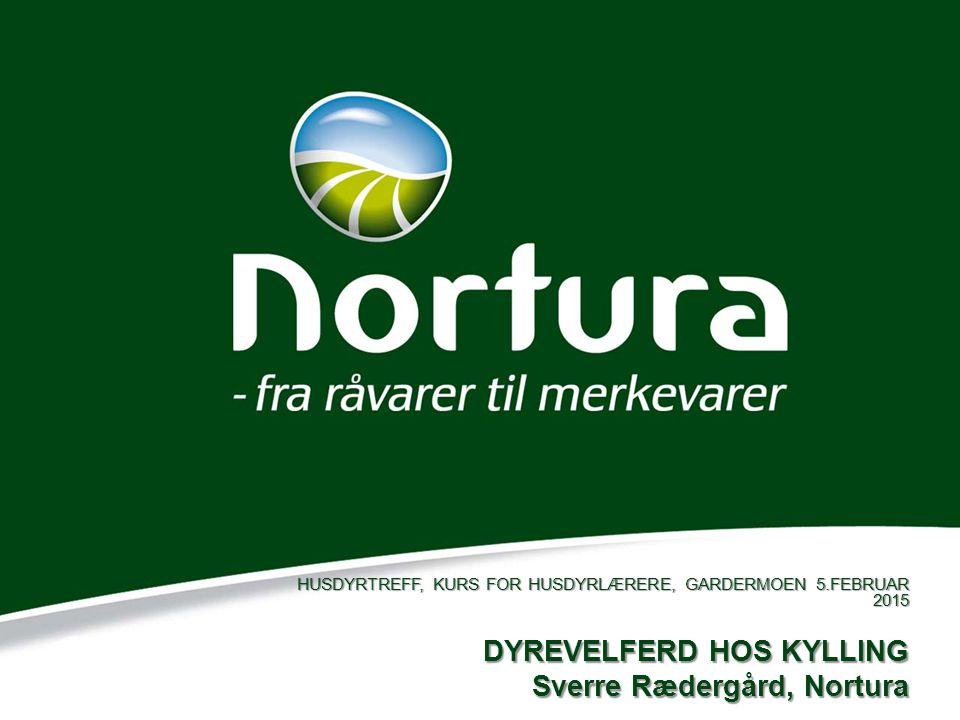 DYREVELFERD HOS KYLLING Sverre Rædergård, Nortura