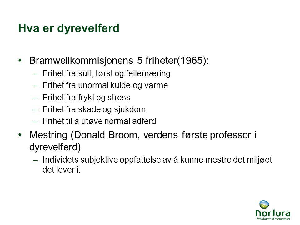 Hva er dyrevelferd Bramwellkommisjonens 5 friheter(1965):