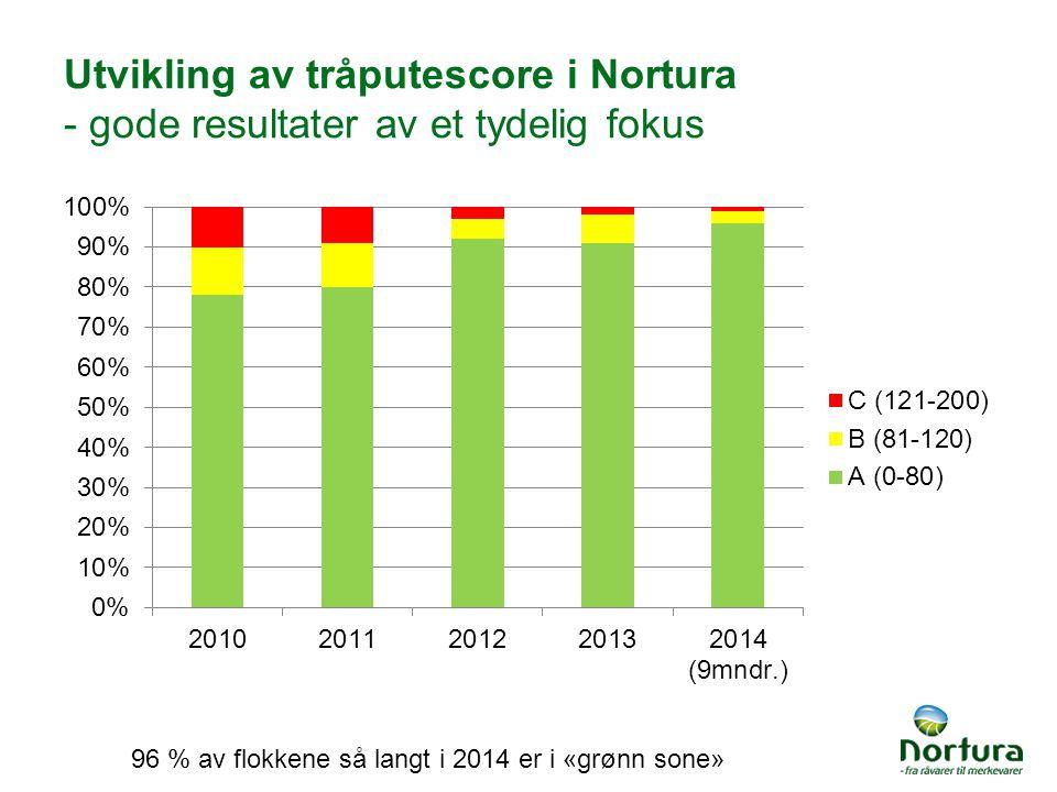Utvikling av tråputescore i Nortura - gode resultater av et tydelig fokus