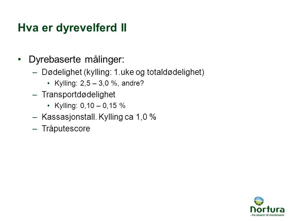 Hva er dyrevelferd II Dyrebaserte målinger: