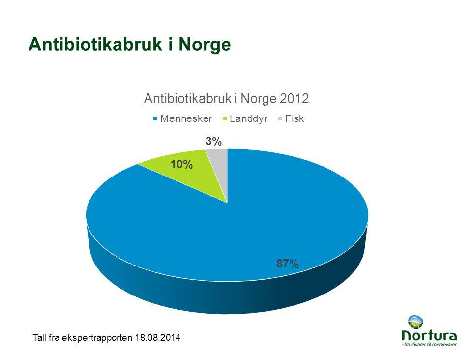 Antibiotikabruk i Norge