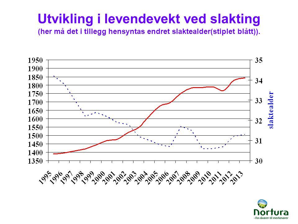 Utvikling i levendevekt ved slakting (her må det i tillegg hensyntas endret slaktealder(stiplet blått)).