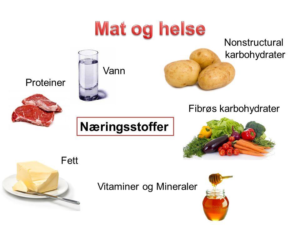 Mat og helse Næringsstoffer Nonstructural karbohydrater Vann Proteiner