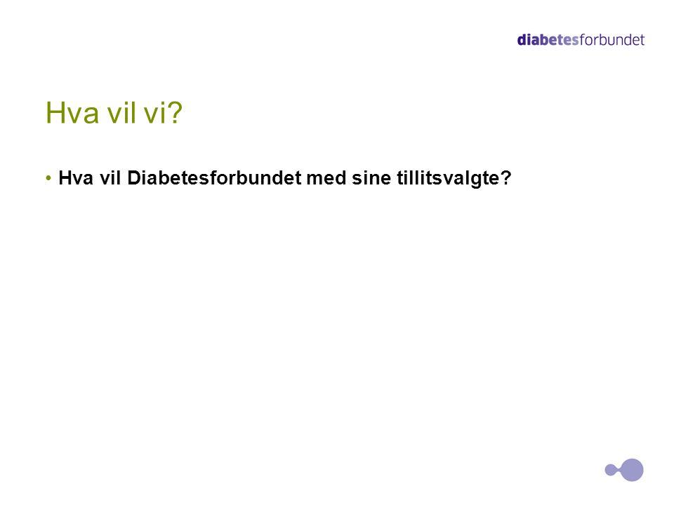Hva vil vi Hva vil Diabetesforbundet med sine tillitsvalgte