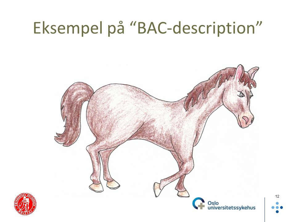 Eksempel på BAC-description