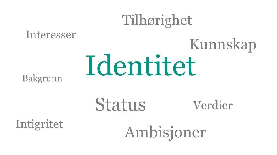 Identitet Status Ambisjoner Kunnskap Tilhørighet Verdier Intigritet
