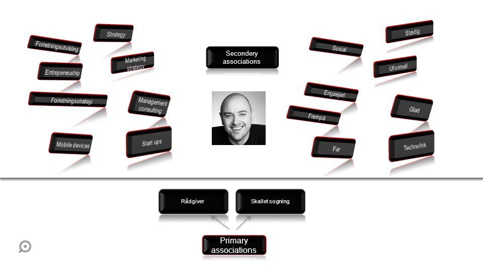 Primary associations Strategy Stødig Forretningsutvikling Sosial