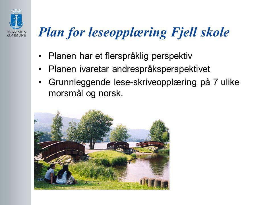 Plan for leseopplæring Fjell skole