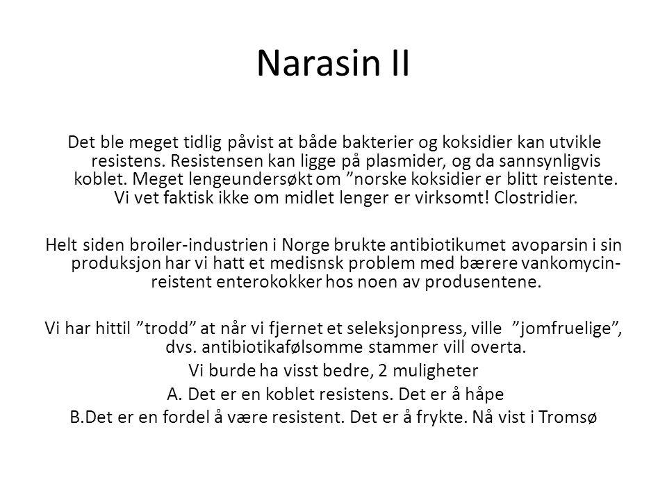Narasin II