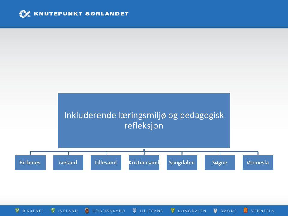 Inkluderende læringsmiljø og pedagogisk refleksjon