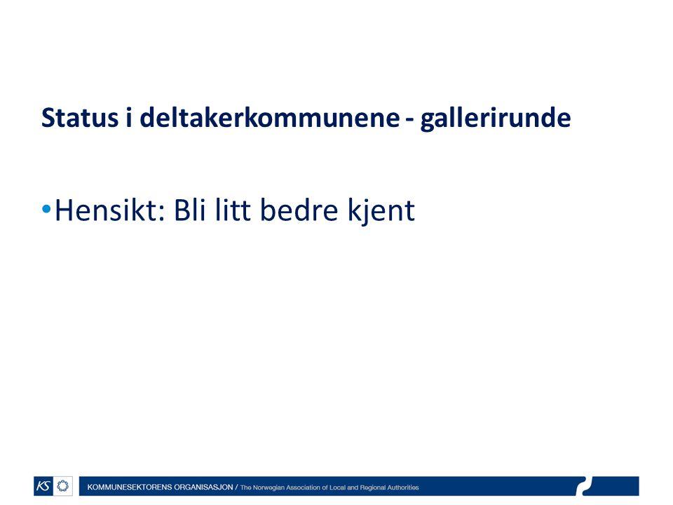 Status i deltakerkommunene - gallerirunde