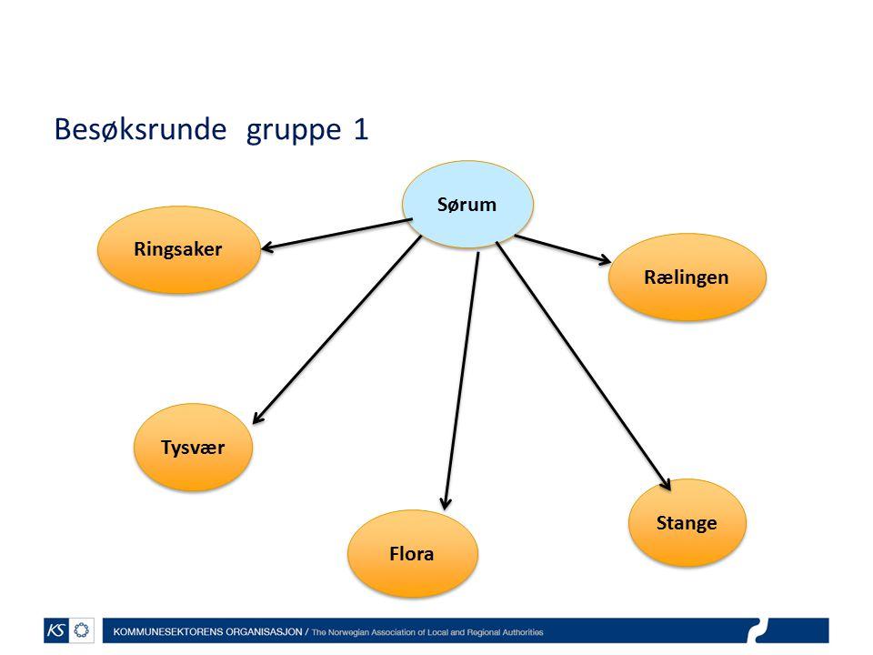 Besøksrunde gruppe 1 Sørum Ringsaker Rælingen Tysvær Stange Flora