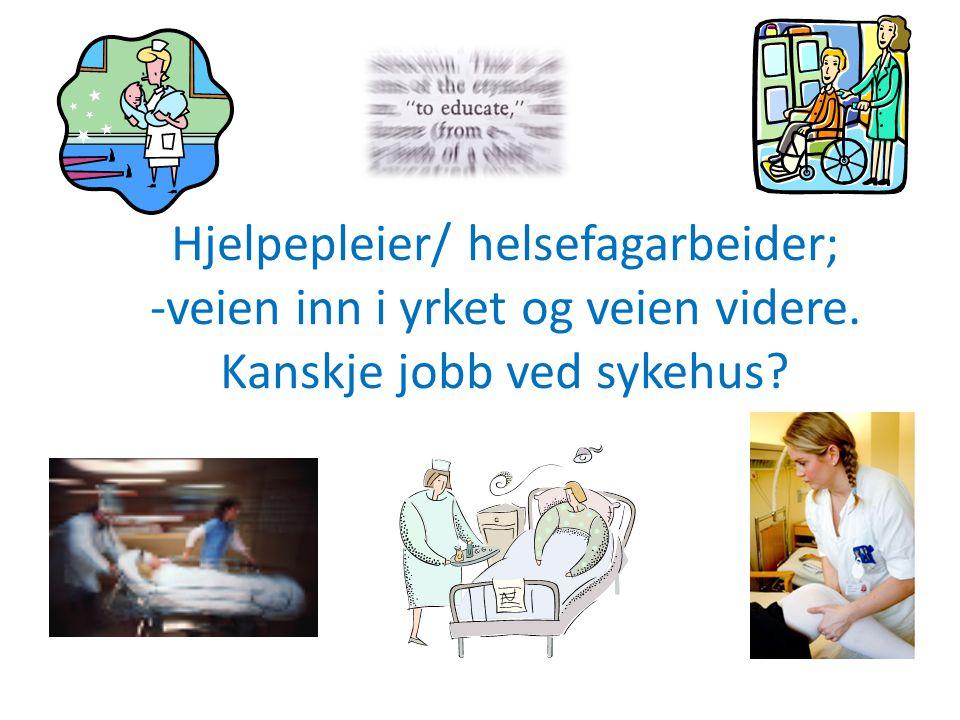 Hjelpepleier/ helsefagarbeider; -veien inn i yrket og veien videre