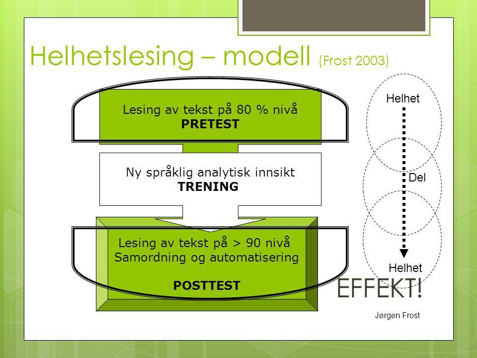 Helhetslesing – modell (Frost 2003)