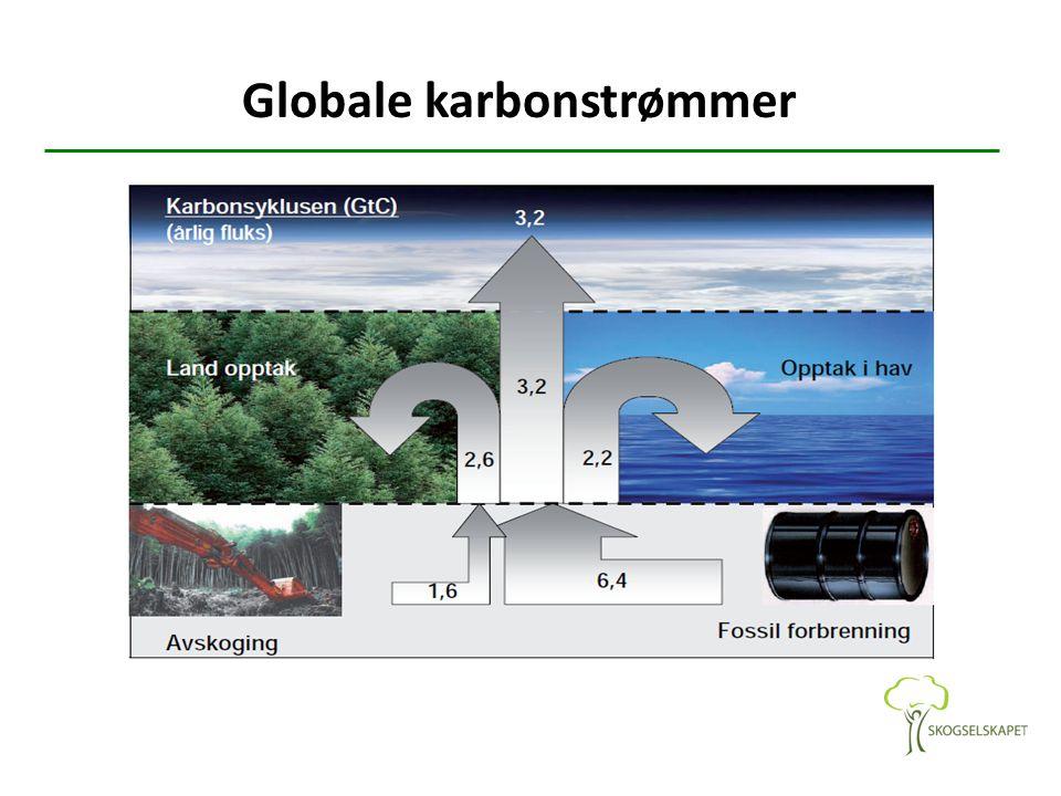 Globale karbonstrømmer