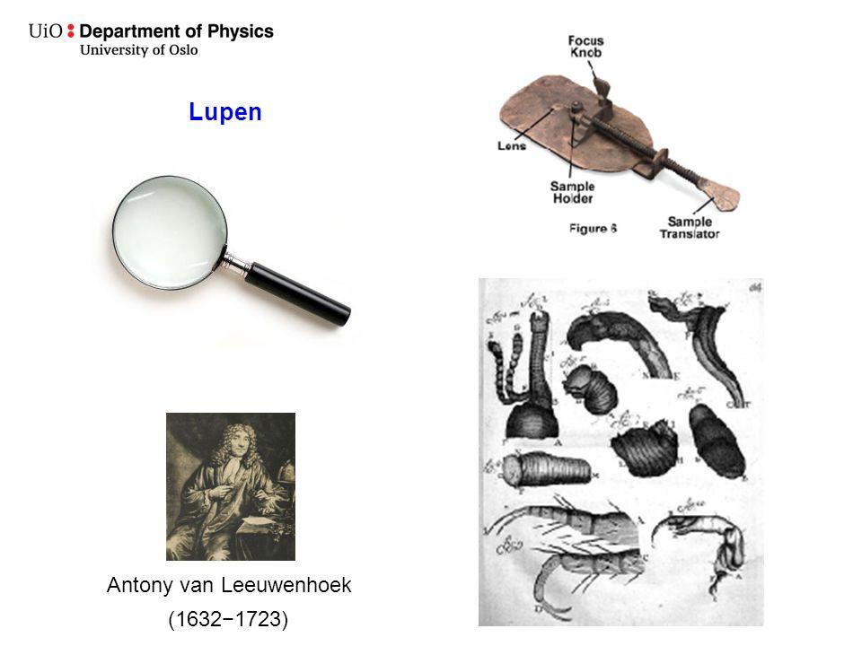 Lupen Antony van Leeuwenhoek (1632−1723)
