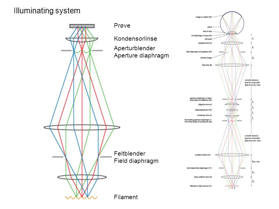 Illuminating system Prøve Kondensorlinse Aperturblender