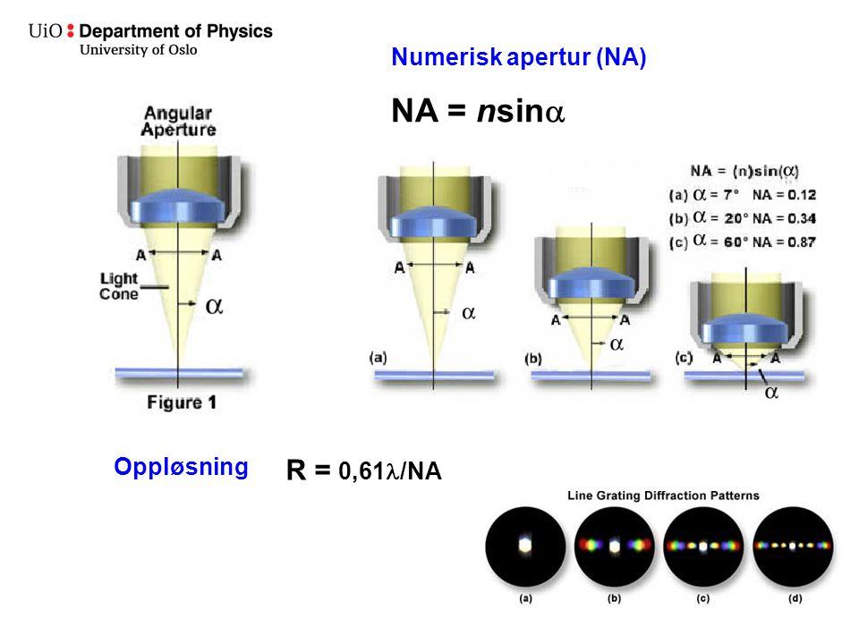 Numerisk apertur (NA) NA = nsina Oppløsning R = 0,61l/NA