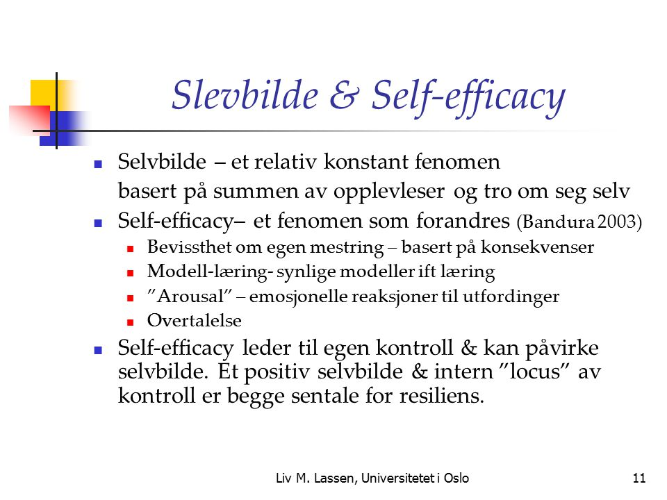 Slevbilde & Self-efficacy