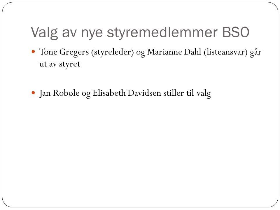 Valg av nye styremedlemmer BSO