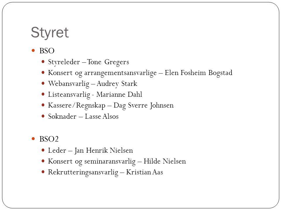 Styret BSO BSO2 Styreleder – Tone Gregers
