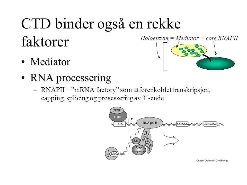 CTD binder også en rekke faktorer